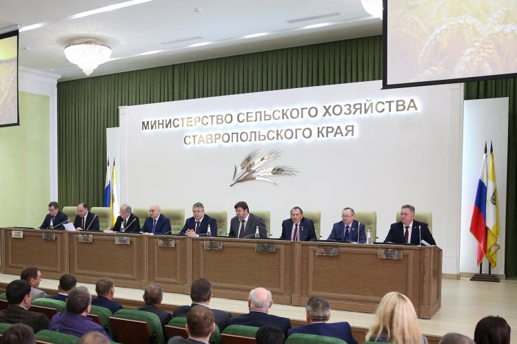 "Regional Conference ""On the results of the work of the agro-industrial complex of the Stavropol Territory in 2018 and tasks for 2019"""